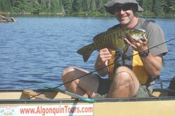 Algonquin Park Fishing Tour